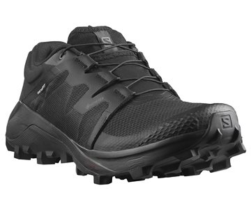 Produkt Salomon Wildcross GTX W 411215