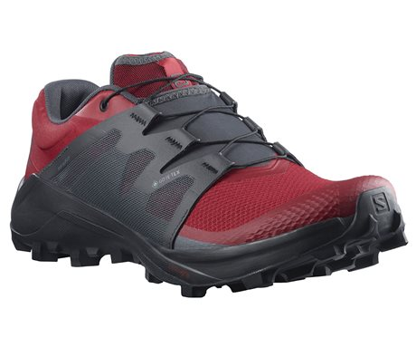 Salomon Wildcross GTX 412753